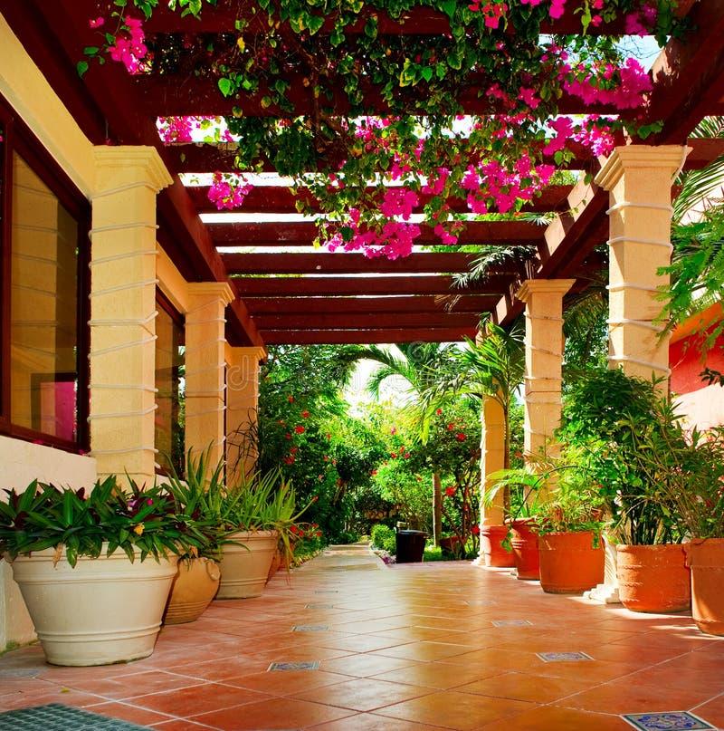 Terraza con las flores imagenes de archivo