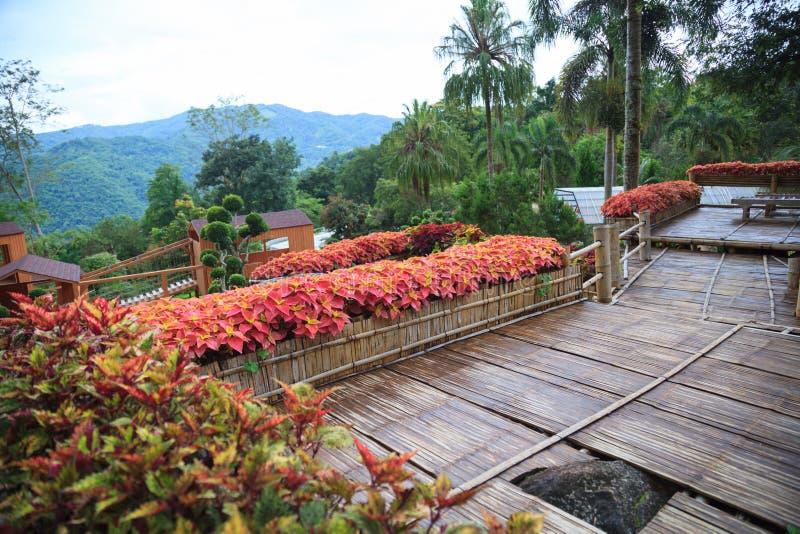 Terraza de madera de bambú del balcón del jardín rural tropical de la casa con el fondo natural del Mountain View Arquitecto inte imágenes de archivo libres de regalías