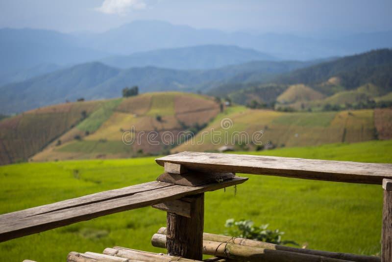 Terraza de madera con el campo del arroz imagen de archivo
