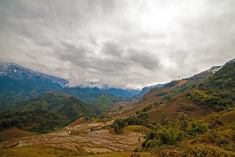 Terraza del arroz, Sapa, Vietnam imagen de archivo libre de regalías