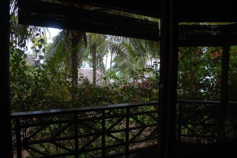 Terraza Y Jardín Filipinas De La Casa De Planta Baja Foto