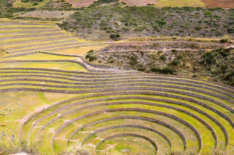 Terrazas agrícolas circulares del inca antiguo en el Moray usado para estudiar los efectos de diversas condiciones climáticas sob imagen de archivo
