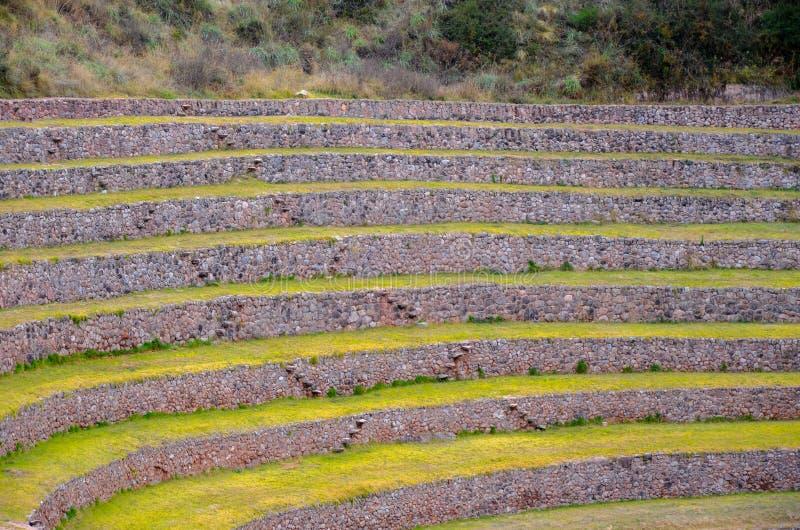 Terrazas agrícolas circulares del inca antiguo en el Moray usado para estudiar los efectos de diversas condiciones climáticas sob foto de archivo libre de regalías