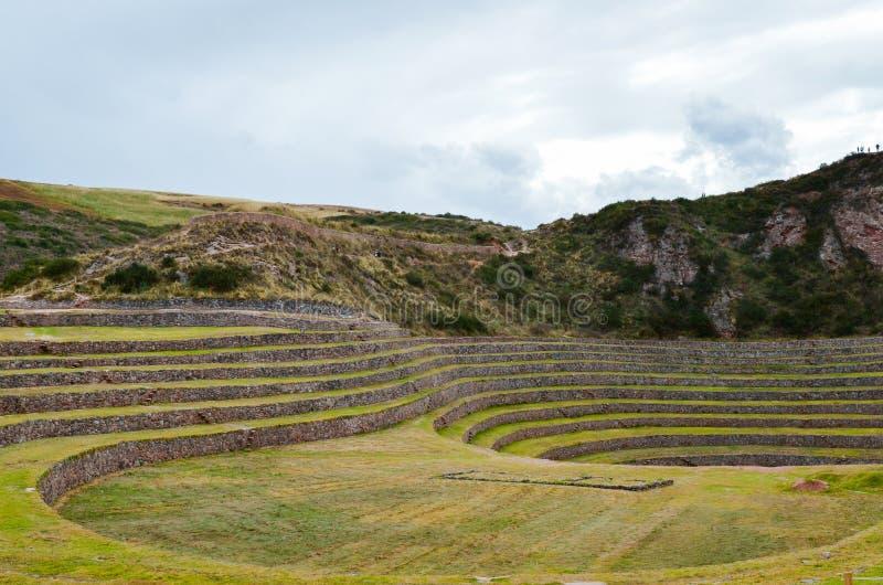 Terrazas agrícolas circulares del inca antiguo en el Moray usado para estudiar los efectos de diversas condiciones climáticas sob imágenes de archivo libres de regalías