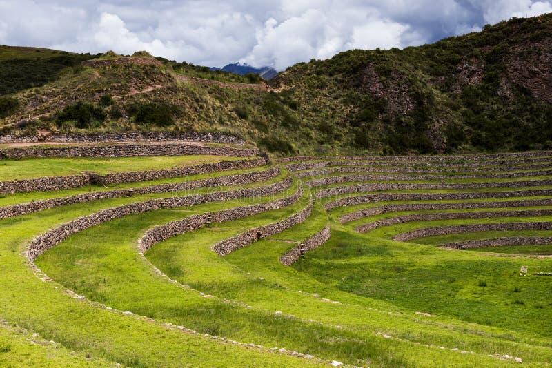 Terrazas circulares del inca en Moray, en el valle sagrado, Perú imágenes de archivo libres de regalías