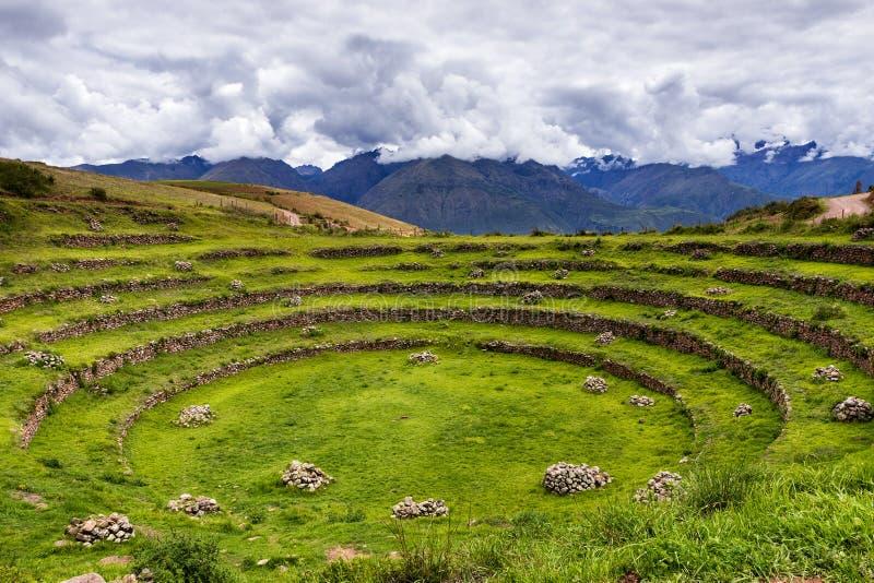 Terrazas circulares del inca en Moray, en el valle sagrado, Perú imagen de archivo