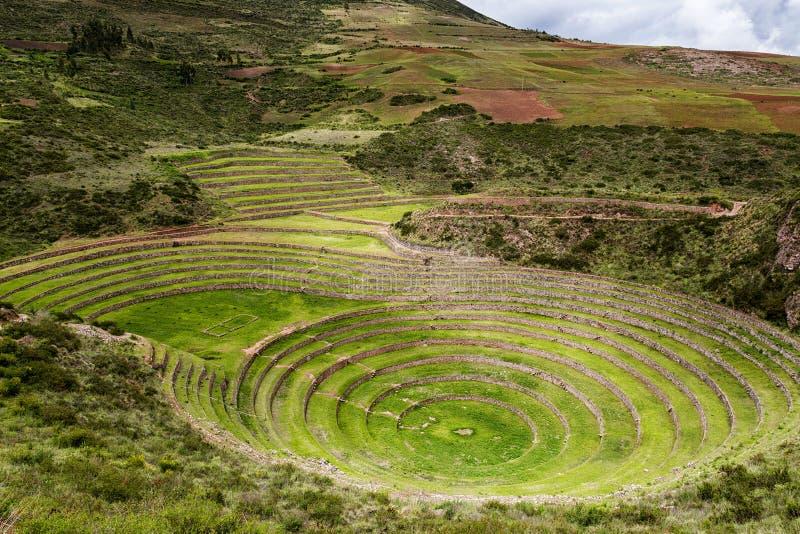 Terrazas circulares en Moray, Perú del inca foto de archivo