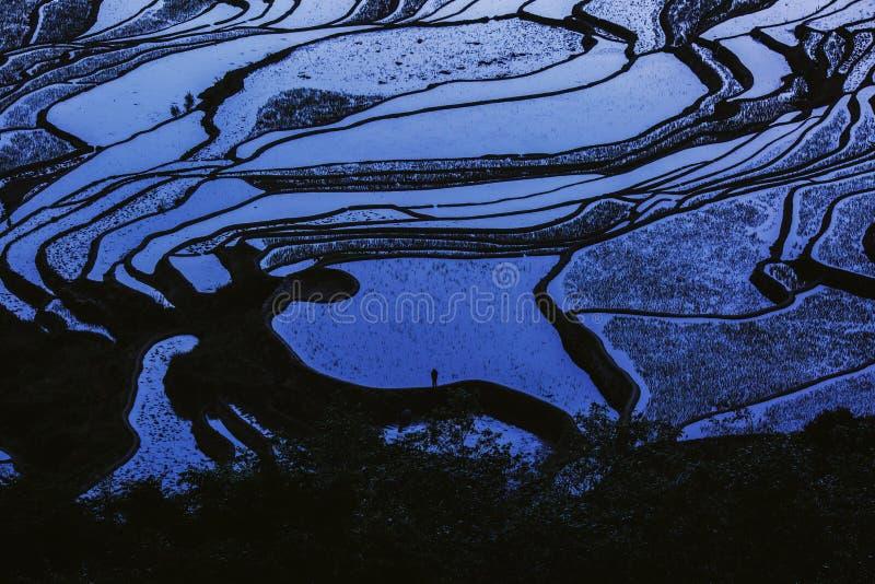 Terrazas del arroz de la puesta del sol de Yunnan China imagenes de archivo