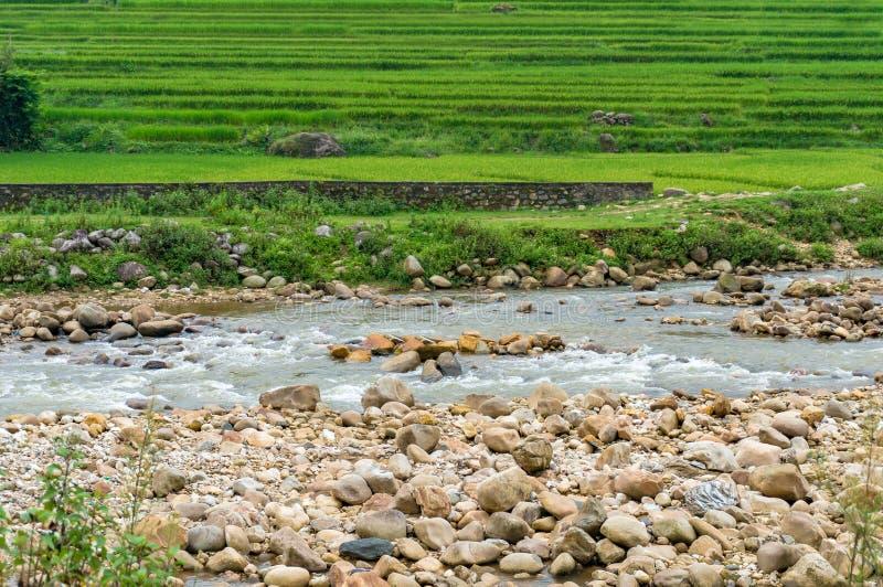 Terrazas rápidas del río y del arroz imagenes de archivo