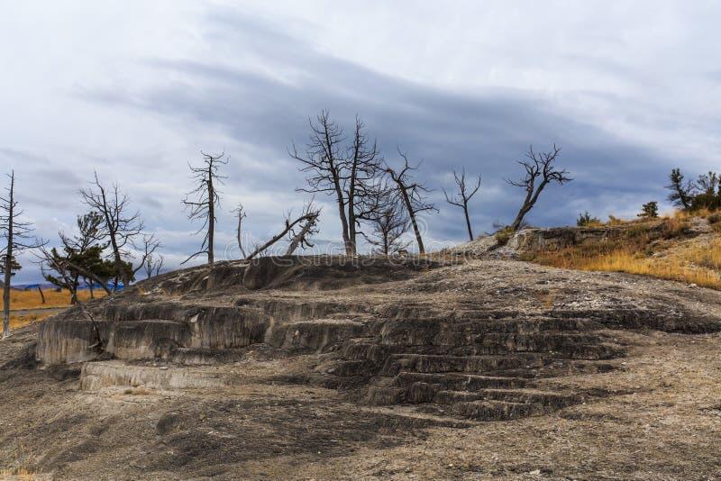 Terrazas viejas Yellowstone de Mammoth Hot Springs fotos de archivo