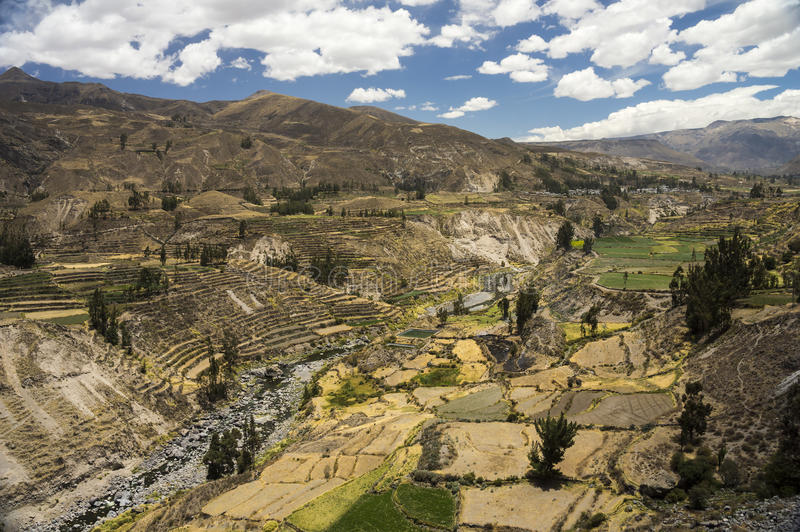 Terrazas y río agrícolas de Colca Arequipa, Perú fotos de archivo libres de regalías