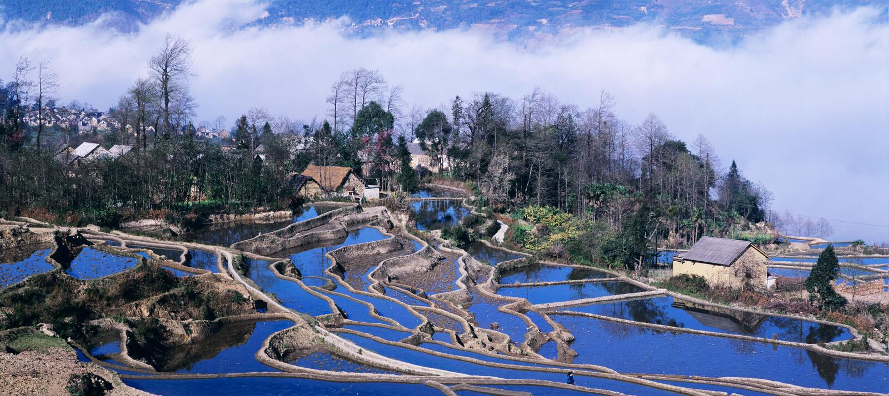 Terrazzi blu del riso di yuanyang immagini stock