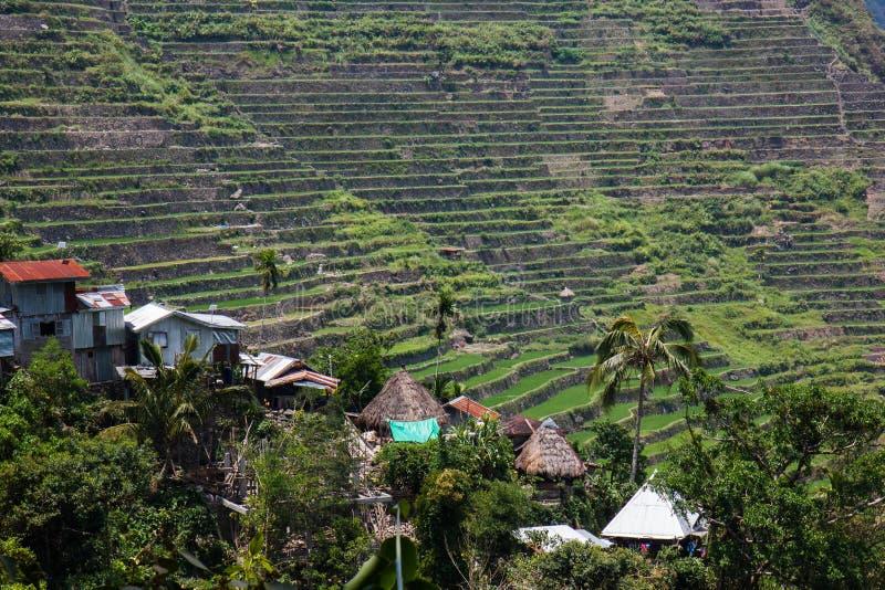 Terrazzi del giacimento del riso di Batad, provincia di Ifugao, Banaue, Filippine fotografia stock libera da diritti
