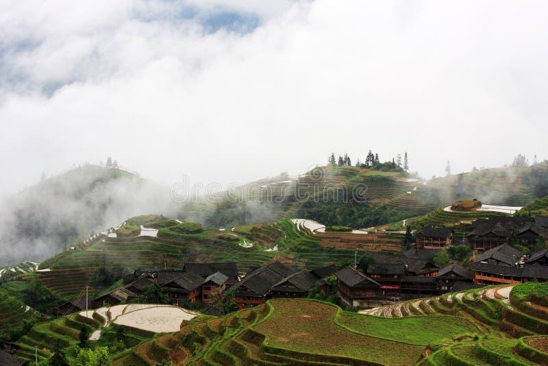 terrazzi del riso fotografia stock libera da diritti