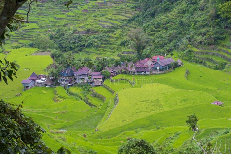 Terrazzi del riso in Banaue le Filippine immagini stock libere da diritti