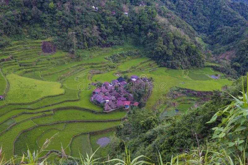 Terrazzi del riso in Banaue le Filippine fotografia stock libera da diritti