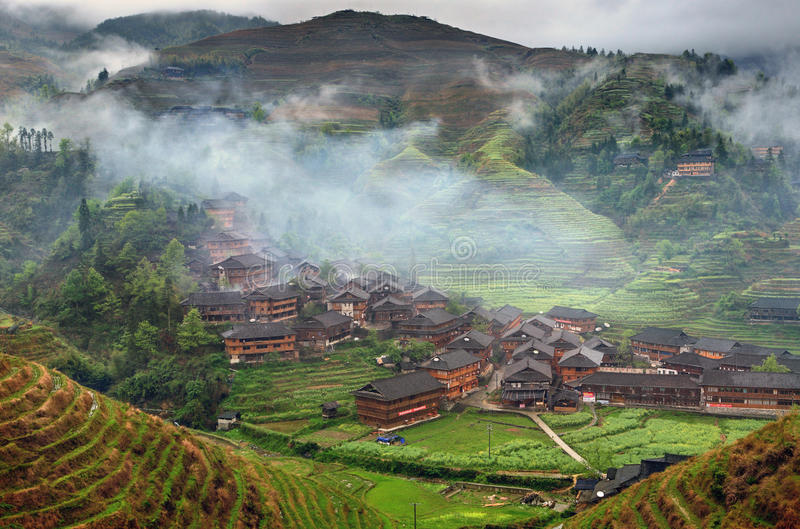 Terrazzi del riso di Hillside, risaie negli altopiani dell'Asia. fotografia stock