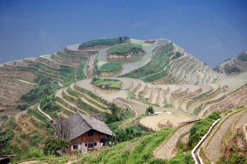 Terrazzi del riso di Longji immagini stock