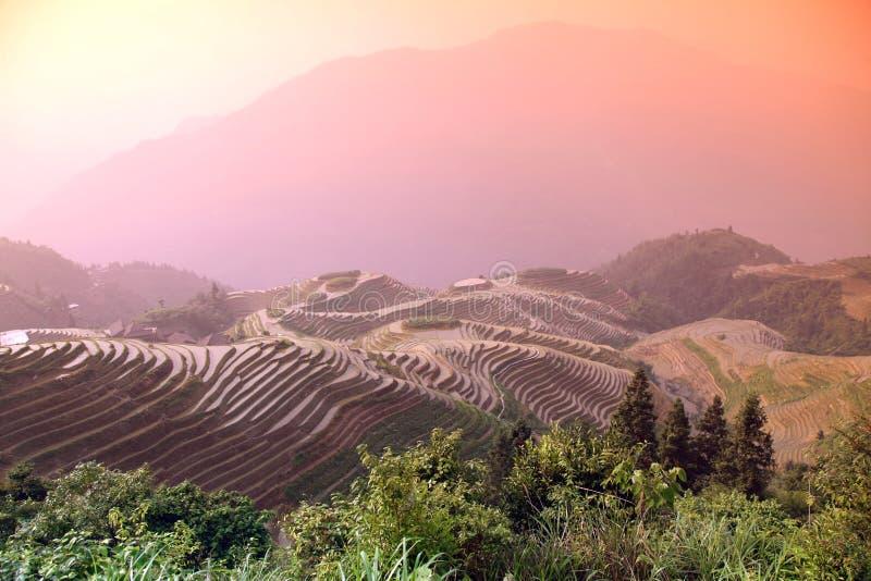 Terrazzi del riso di Longji fotografie stock libere da diritti