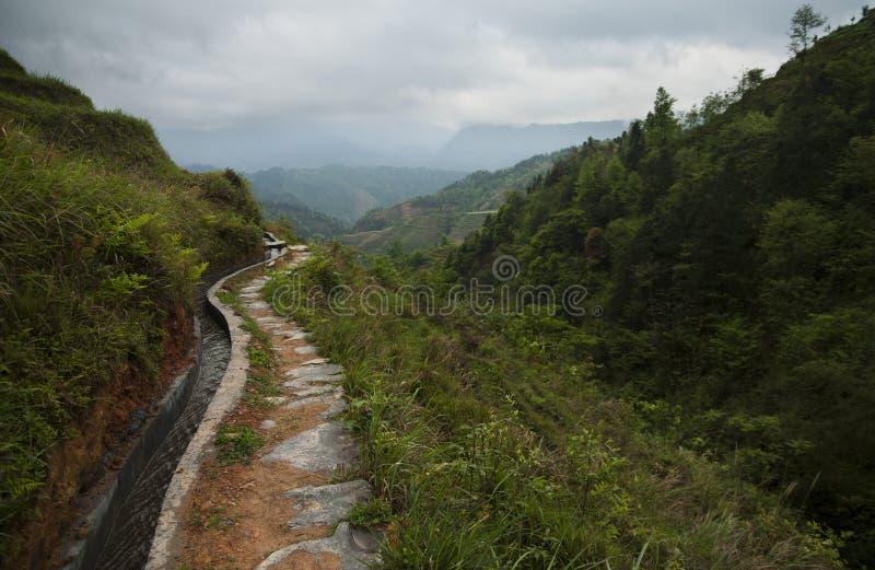 Terrazzi del riso di Longsheg (Cina) immagine stock