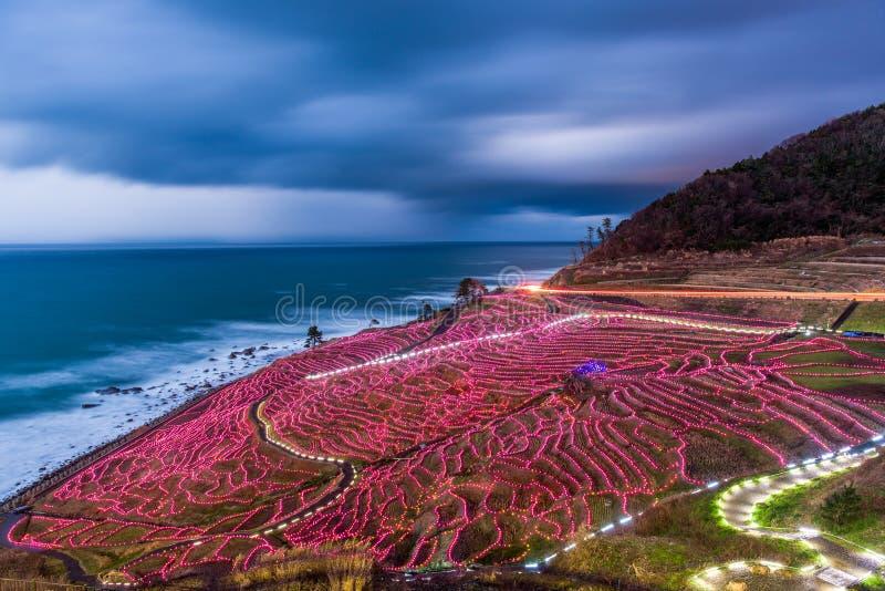 Terrazzi del riso di Shiroyone Senmaida fotografia stock