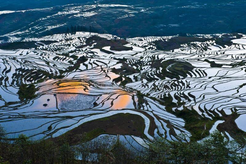 Terrazzi del riso di yuanyang fotografie stock