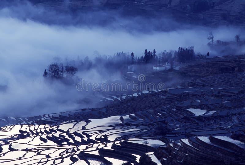 Terrazzi del riso di Yuanyang immagine stock libera da diritti