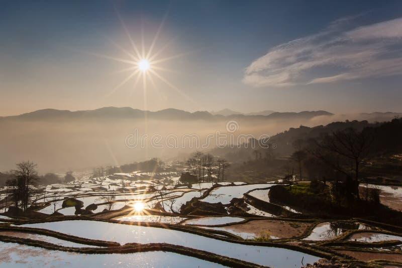 Terrazzi del riso di yuanyang fotografia stock libera da diritti