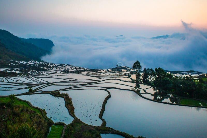 Terrazzi del riso di Yuanyang in Cina immagine stock libera da diritti