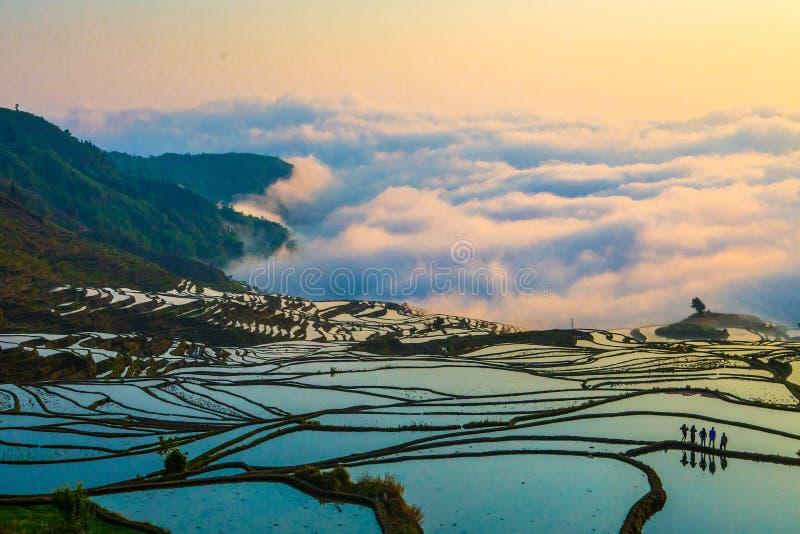 Terrazzi del riso di Yuanyang in Cina fotografia stock libera da diritti
