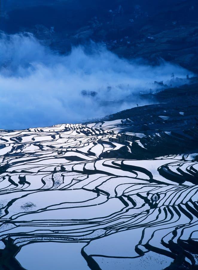 Terrazzi del riso di yuanyang di mattina fotografia stock libera da diritti