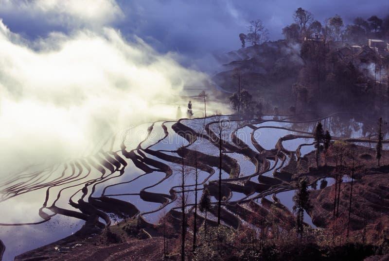 Terrazzi del riso di yuanyang di mattina fotografie stock