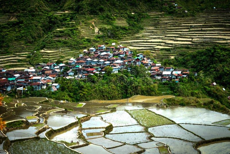 Terrazzi del riso e case del villaggio Banaue, Filippine fotografia stock