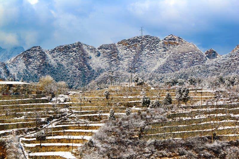 Terrazzi della neve di Pechino immagine stock libera da diritti
