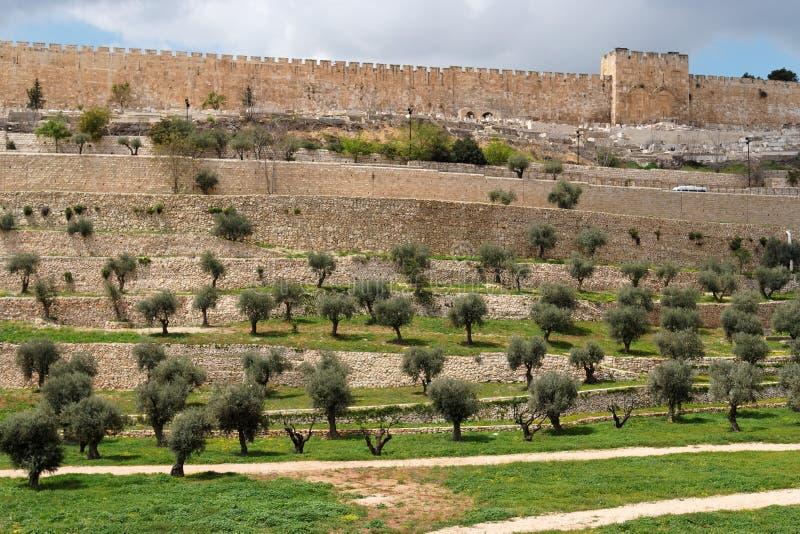 Terrazzi della valle di Kidron e della parete di immagine stock
