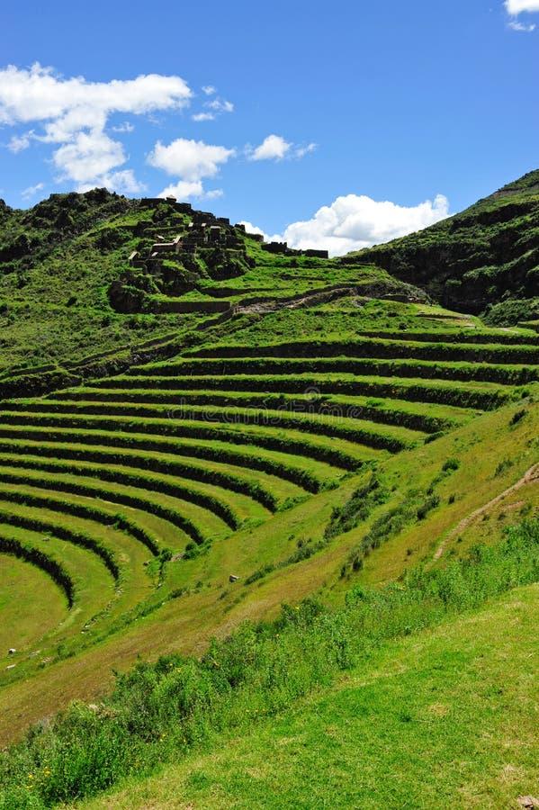 Terrazzi di Hilldide nel Perù fotografie stock libere da diritti