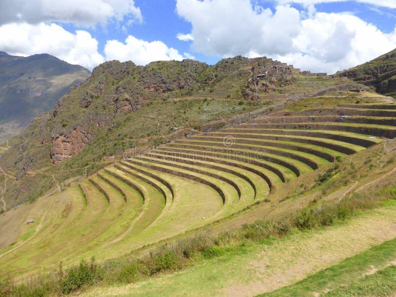 Terrazzi di inca in montagne delle Ande immagine stock libera da diritti