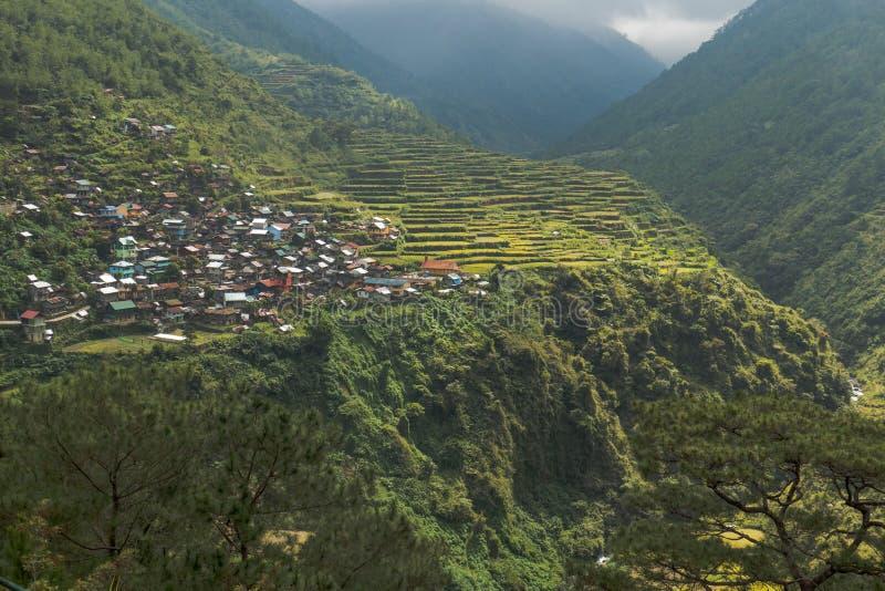 Terrazzi e Bayo Bayo Village In Philippines del riso fotografia stock libera da diritti