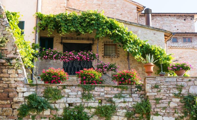 Terrazzo con i fiori fotografia stock. Immagine di domestico - 77562396