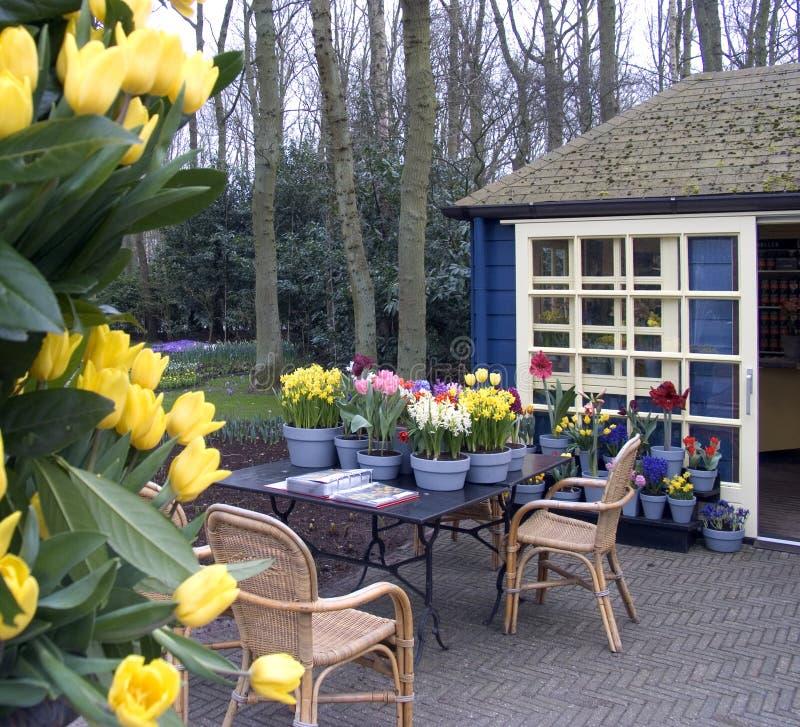 Terrazzo del fiore fotografia stock
