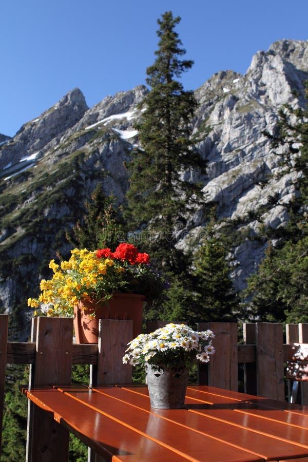 Terrazzo dell'Austria delle alpi fotografia stock