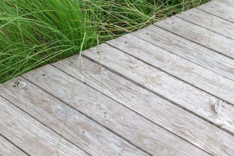 Terrazzo di legno a strisce della plancia ed erba verde immagini stock libere da diritti