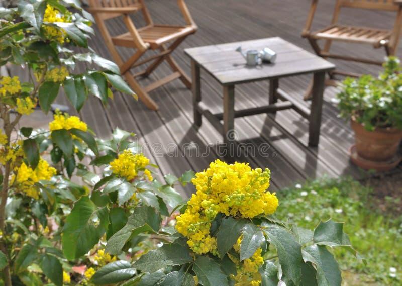Terrazzo fiorito fotografia stock. Immagine di terrazzo - 39563708