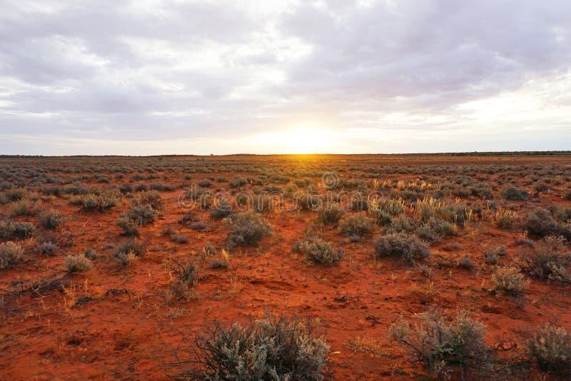 Terre aride, Roxy Downs, Australia Meridionale di entroterra fotografie stock