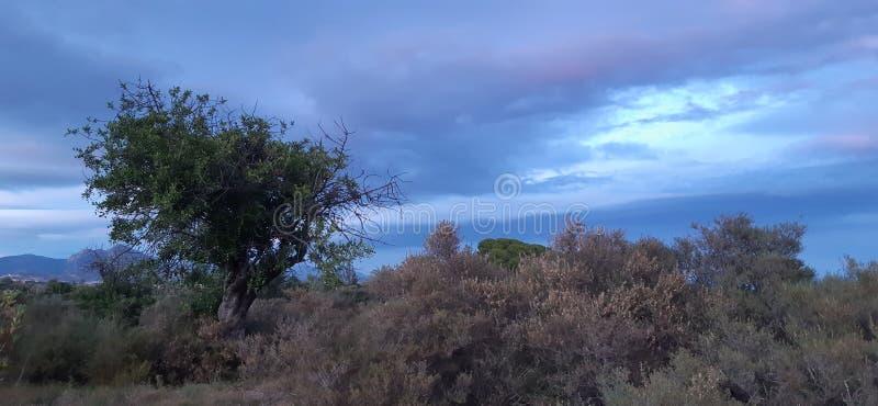 Terre coltivate fotografie stock libere da diritti