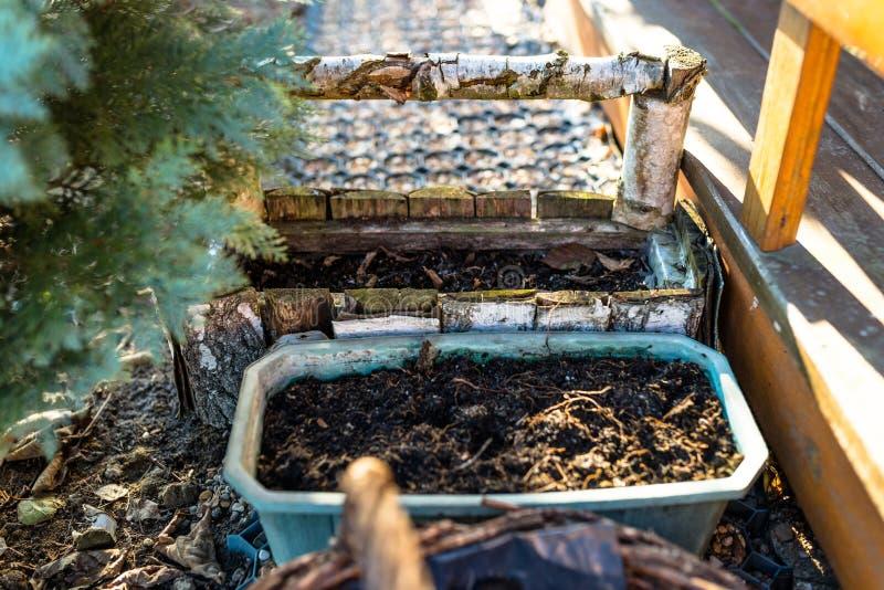 Terre cultivée dans un conteneur en bois dans un jardin image libre de droits
