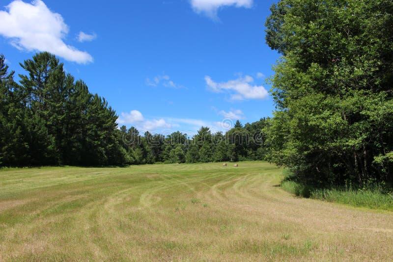 Terre de ferme dans le Wisconsin photo libre de droits