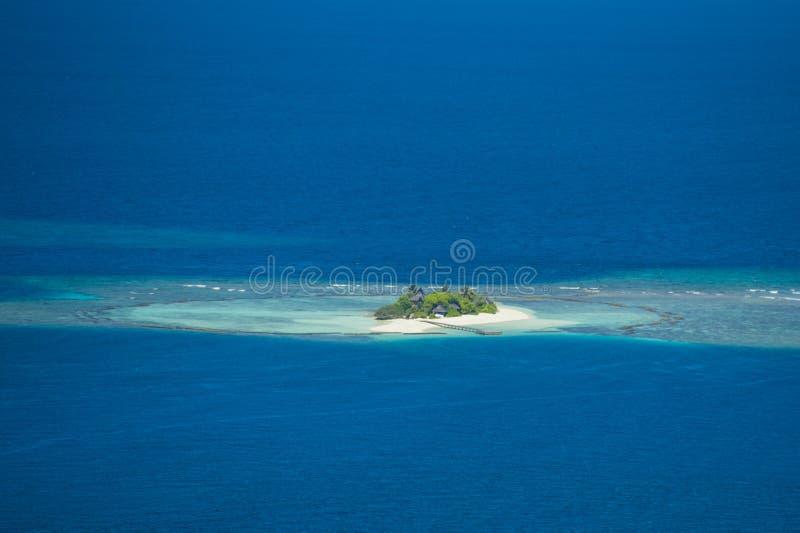 Terre de Kurolhi des bambous image libre de droits