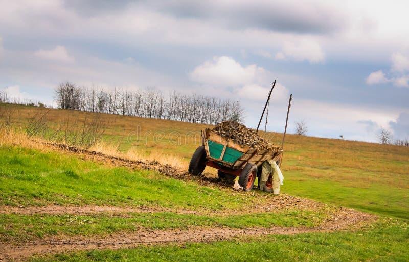 Terre de la Roumanie images libres de droits