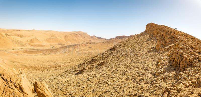 Terre de marche de touristes de bord d'arête de falaise de montagne de désert de randonneur photos libres de droits
